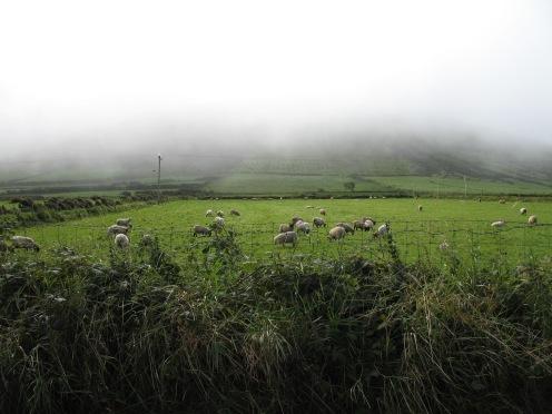 more-fabulous-countryside